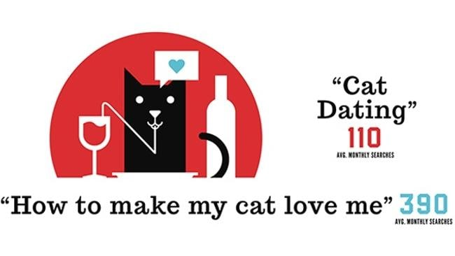 We have no idea what cat dating is. And we're sure we don't want to know. Source: Searchfactory.com