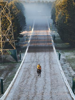 Business as usual in the cold and frosty conditions at Ballarat. Picture: Getty Images
