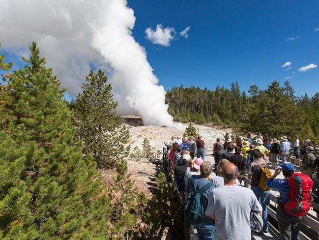 Normally dormant, Steamboat geyser blows in Yellowstone National Park for the fourth time in seven weeks.