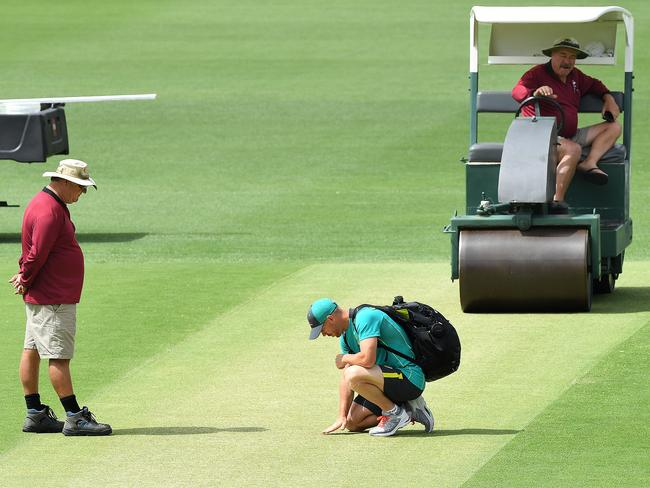 David Warner inspects a Gabba wicket expected to favour the home side.