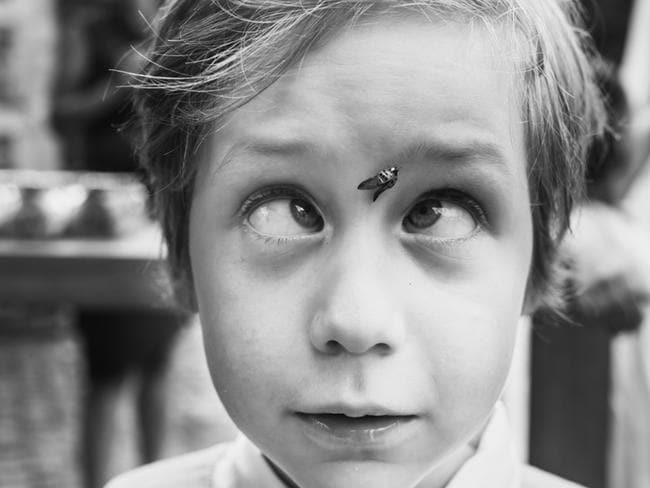 This little lad is caught with a fly on his face. Picture: PHILIPPE SWIGGER / ISPWP / CATERS NEWS