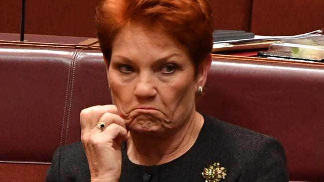 A Trump government report on religious freedom has singled out Pauline Hanson. Picture: AAP Image/Mick Tsikas.