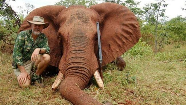 comparison and contrast between salvation and shooting an elephant Get an answer for 'what are the main conflicts in shooting an elephant' and find homework help for other shooting an elephant questions at enotes  the first is the ethical difference .