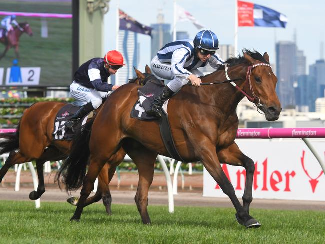 Amelie's Star wins Race 7 during Turnbull Stakes Day at Flemington.