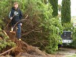 Luke Byrne at Aldinga Beach with a tree uprooted in his front yard. Picture: Tait Schmaal