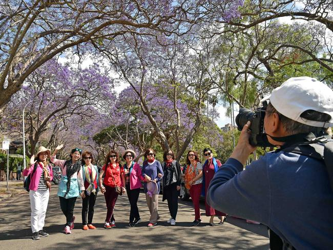 Tourists line up for a photo on the road. Picture: AAP IMAGE/Troy Snook