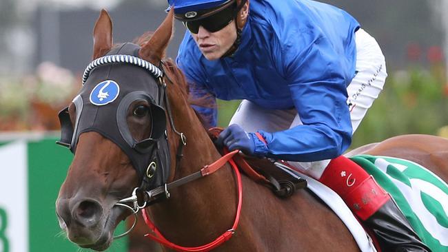 Raiment has impressed on the track at Warwick Farm this week.