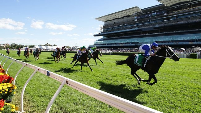Support: Royal Descent and Nash Rawiller clear out from their rivals at Randwick on Saturday. Picture: Rohan Kelly