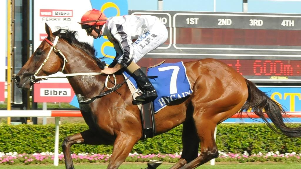 Jockey Luke Rolls rode the Mel Eggleston-trained All Over Bosanova to victory in the Class 2 Handicap (1100m) on the Gold Coast on Saturday, January 28. Picture credit: Grant Peters, Trackside Photography.