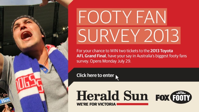 Footy Fans Survey art