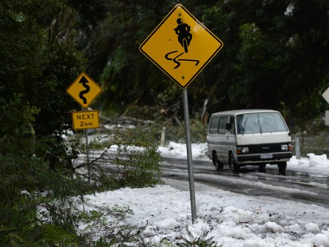 Road crews are busy at Mt Donna Buang clearing the trees with chainsaws, chains and heavy vehicles. A grader was also clearing snow and forest debris from the popular tourist road. Picture: Steve Tanner