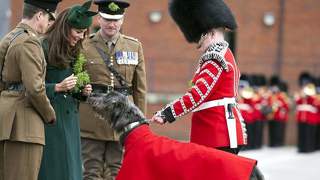 Traditional ... Catherine, Duchess of Cambridge, hands Shamrocks to officers and guardsme