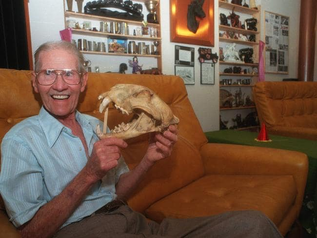 BIZARRE: Bill Hambly-Clark showing skull of the circus lion that he shot at Wingfield.