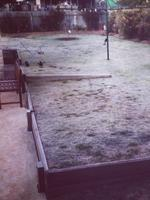 Frosty back yard in Toowoomba. Pic: Joanne Beazley