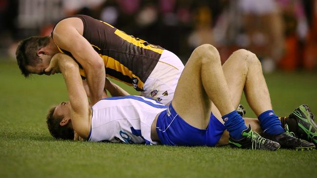 Drew Petrie and Brian Lake trade blows on the ground. Picture: Wayne Ludbey