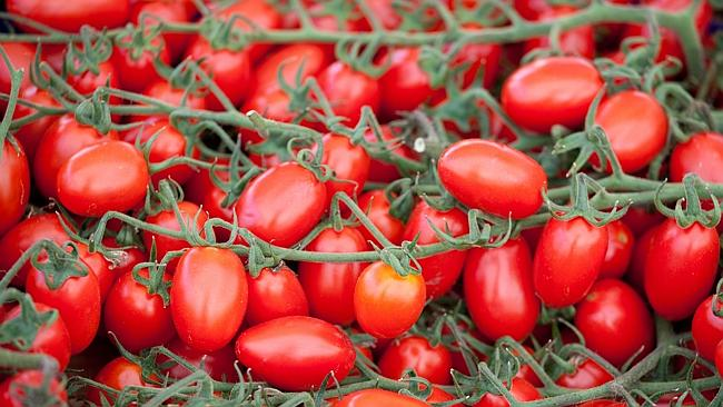 Organic farming is set to be a high growth area in 2014. Picture: Thinkstock