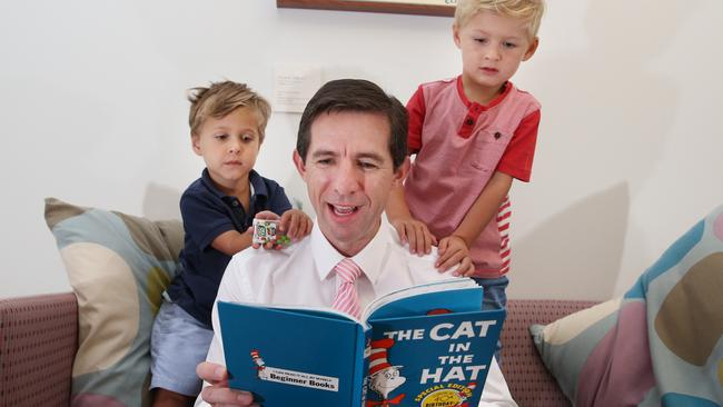 Education Minister Simon Birmingham, pictured above, said it was key to better understand where skills were lacking. Picture: Gary Ramage