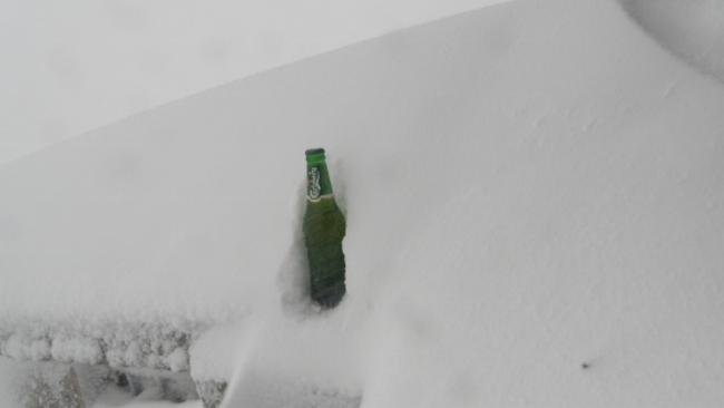 The same beer bottle this morning.