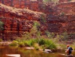 "PARKS FOR PEOPLE: The spectacular ""grandscape"" along Dale's Gorge, Karijini. Picture: Dane Hendry"