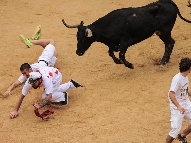 Two revellers fall on the bull ring in front of a cow. AP Photo/Alvaro Barrientos