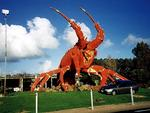 <strong>THE BIG LOBSTER<br /> Kingston, South Australia</strong>  <br />  <br />  <p>Definitely the freakiest of the lot, Kingston's Big Lobster is 17 metres high, 15.2 metres long and 13.7 metres wide. It was opened by then-Premier David Tonkin in 1979, and also doubles as a seafood restaurant.<br /> <br /> Picture: Supplied</p>