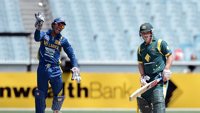 Chandimal celebrates after bringing Finch's debut at the crease to an end.