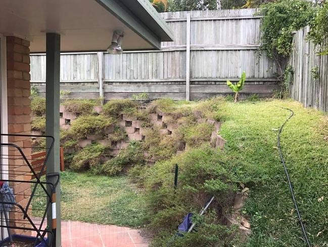 Can you spot the snake hiding in this backyard? Picture: Sunshine Coast Snake Catchers