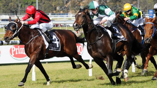 Rock Sturdy (red cap) is grabbed in the shadows of the post by the highly-talented Cluster last start at Rosehill. The son of Fastnet Rock has plenty of upside and can show plenty of improvement at his second run this campaign. Picture: Simon Bullard.