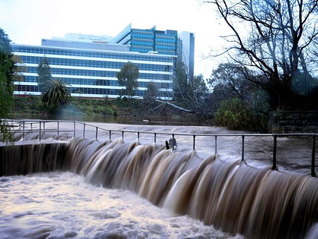 Parramatta River has burst its banks. Photo: Diimex