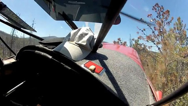 After rapidly losing altitude, the plane has just clipped a tree and is about to hit the ground. . Picture: YouTube