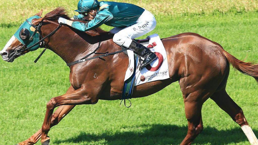 Acatour, jockey Blake Shinn and Team Snowden are a form combination — stick with them.