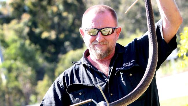 Snake catcher Tony Harrison with eastern brown snake. Picture: Richard Walker