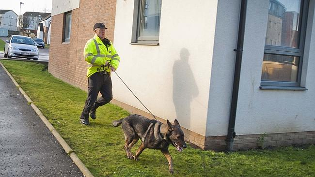 Searching ... A police officer and a dog searches near Mikaeel's home.