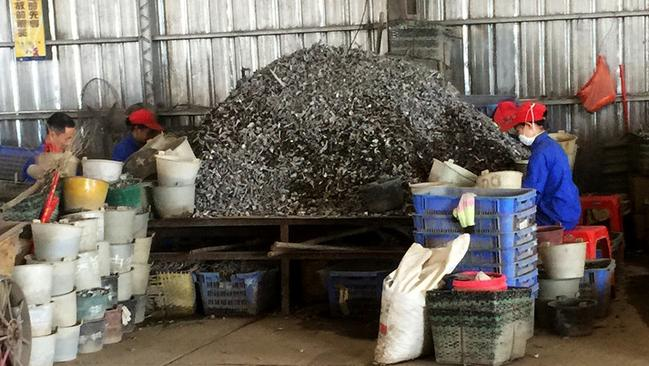 Workers in China sift through piles of shredded aluminium. Picture: FormerFedsGroup.com