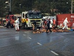 Thousands of effulent is washed away after the crash. Picture: Sam Kelton