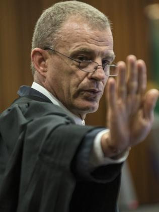 A pre-planned murder ... State prosecutor Gerrie Nel gestures in court. Picture: AP