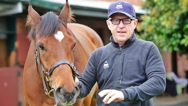 Trainer Mick Price has some good chances at Cranbourne on Friday night. Picture: Hamish Blair