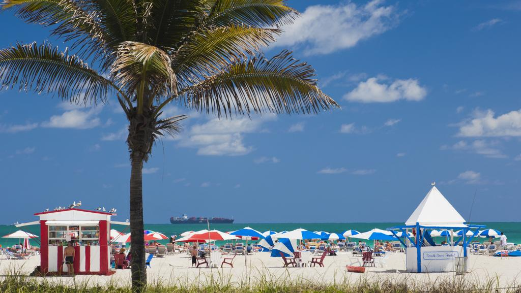 Why florida is the weirdest state in america daily telegraph for Best places to visit in us during christmas