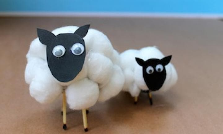 Make a cotton wool sheep