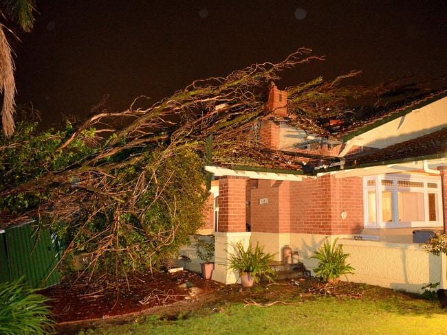 SES workers at a home damaged after a large neighbouring tree in South Australia feel through it's roof, due to the strong winds. Picture: Bianca De Marchi