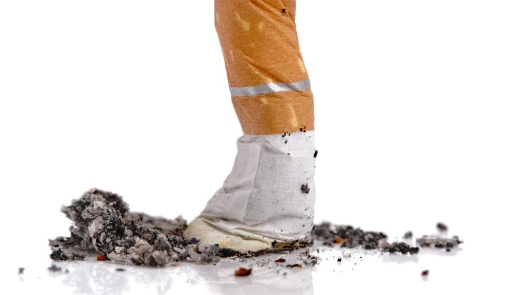foreign literature about the effects of smoking on the study habits One last puff public smoking bans and smoking effects on individual smoking habits this study makes several contributions to the existing literature our.