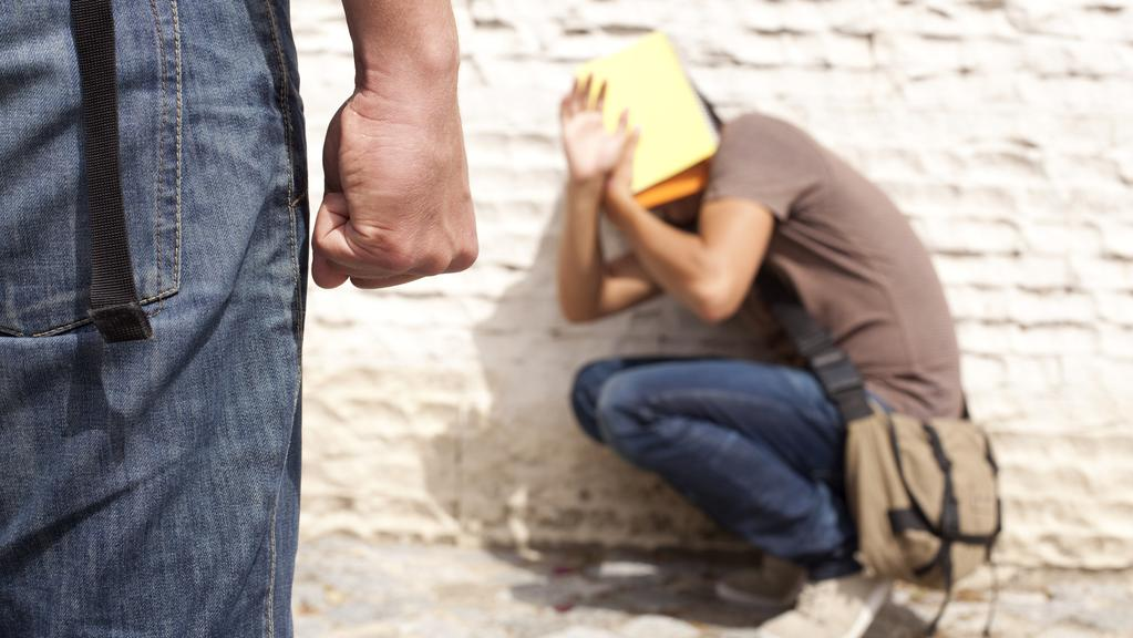 A Flinders University expert says it's time to ban the word 'bullying'.