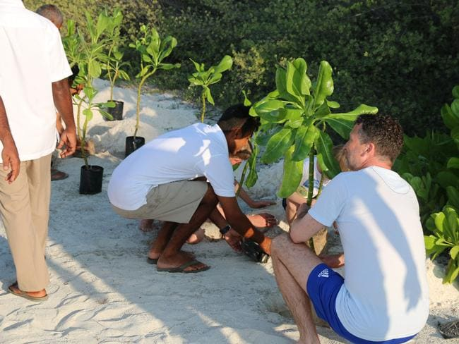 Planting trees during Earth Day activities at COMO Cocoa Island. Picture: Celeste Mitchell