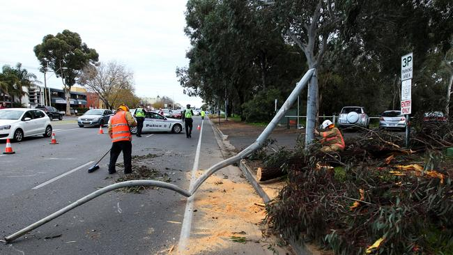 Emergency services clean up after a tree branch fell on a car on Greenhill Road in Unley. Picture Simon Cross