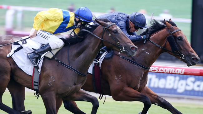 Blue Diamond favourite Long Leaf edged out Oohood in the Merson Cooper Stakes. Picture: Michael Klein