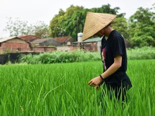 Hanoi alternative travel guide. Picture: Ronan O'Connell