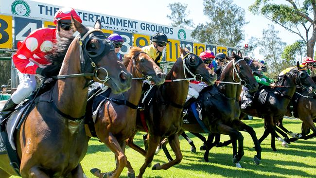 summer racing series heats up at gosford and wyong tracks. Black Bedroom Furniture Sets. Home Design Ideas