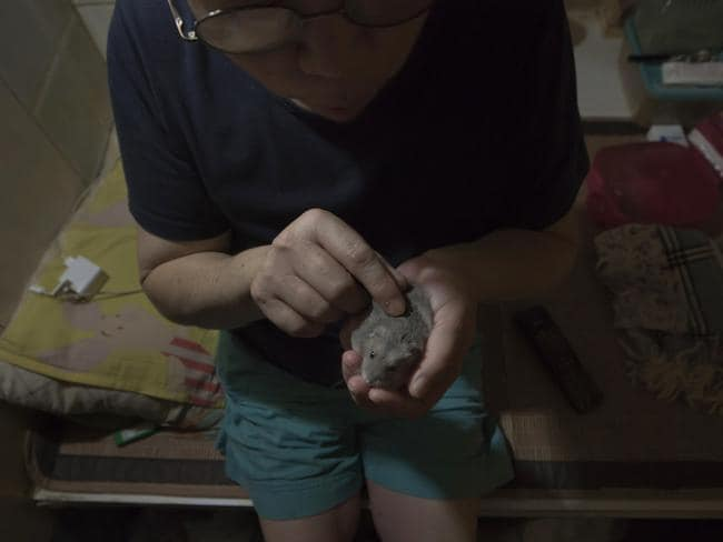 Kitty Au plays with her hamster in her 'coffin home' in Hong Kong. Picture: Kin Cheung/AP