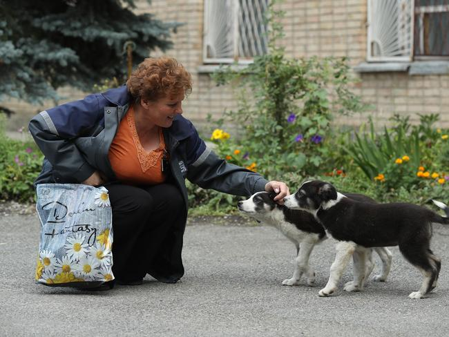 Administration worker Lyudmila Ivanovna greets stray puppies inside the exclusion zone. Picture: Getty Images