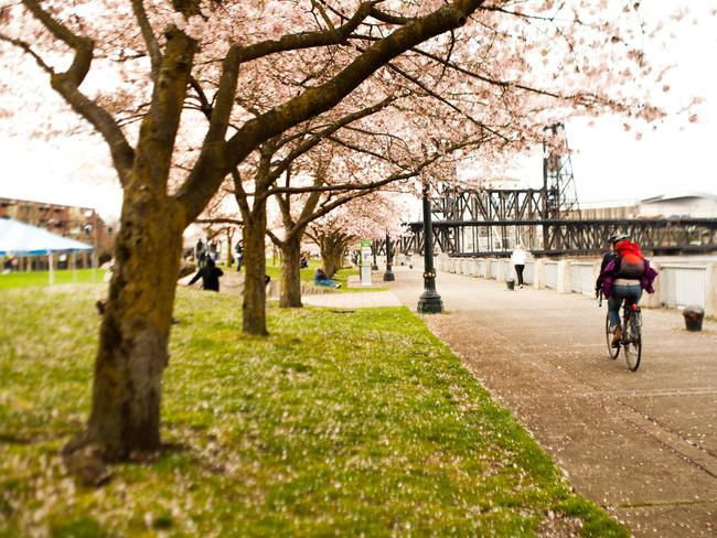 Why the best way to see Portland is by bike.